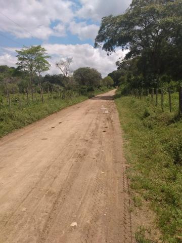 Fazenda Ibicaraí - Foto 7