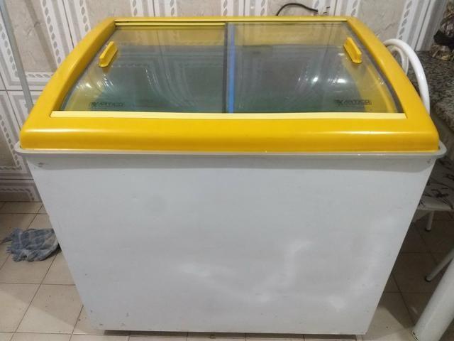 Freezer artico