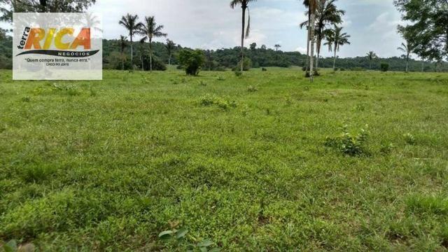 Fazenda com 320 hectares a venda na Zona Rural de Porto Velho/RO - Foto 3