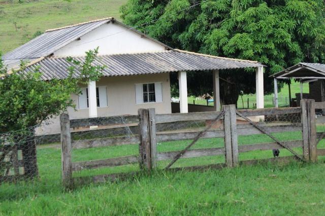 """Fazenda Montada 25 Alqueires Cocalzinho""""Toda Formada,72 km de Anapolis,129 km Goiania - Foto 12"""
