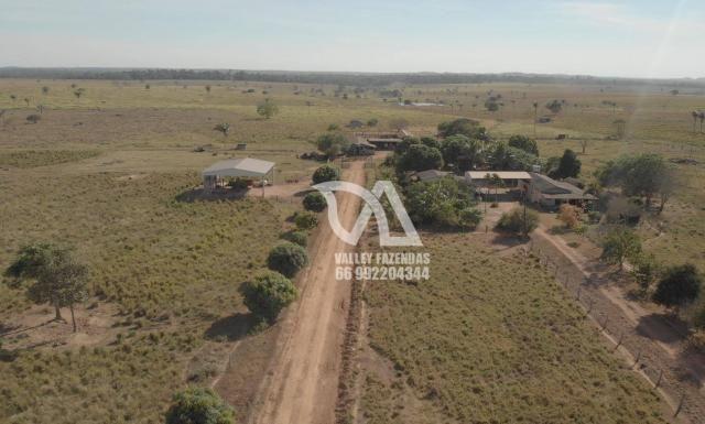 Fazenda à venda, 1134 hectares por R$ 24.000.000,00 - Novo Mundo/MT - Foto 10