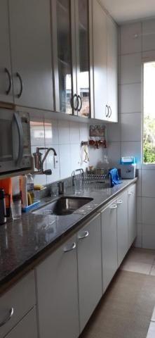 Cobertura com 3 dormitórios à venda, 150 m² por R$ 435.000,00 - Caiçara - Belo Horizonte/M - Foto 12