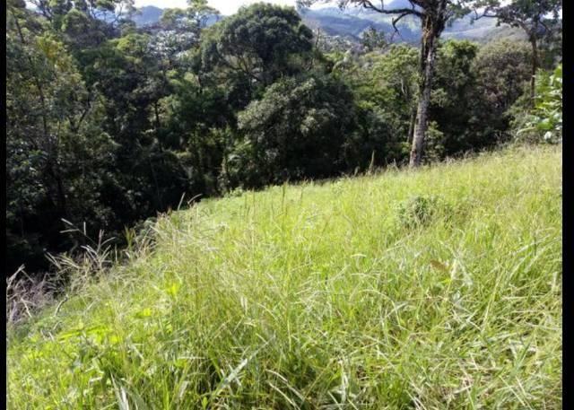 Vendo terreno de 4 alqueires em Ribeirão, Vargem Alta - Foto 8