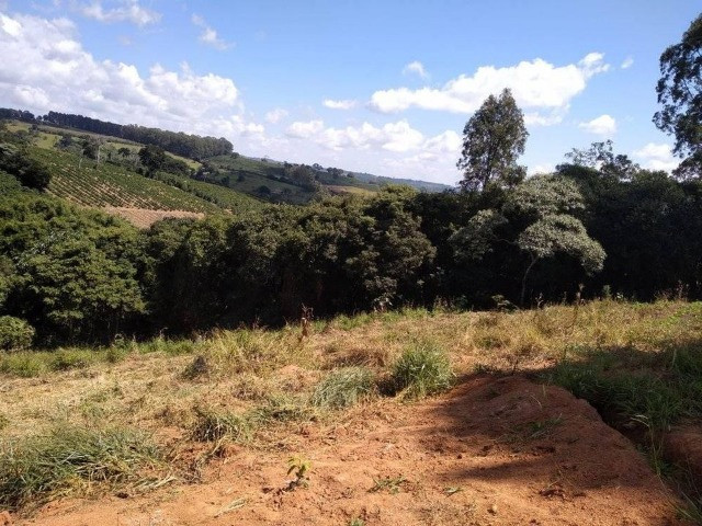 Vende-se chácaras de 1000m² em Muzambinho - Foto 2