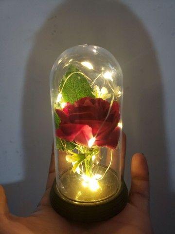 Cúpula Luminária Rosa Bela e a Fera com led - Foto 3
