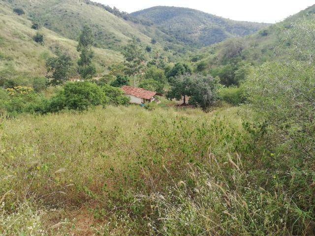 Fazenda com 127 hectares em Baixo Guandu - Foto 8