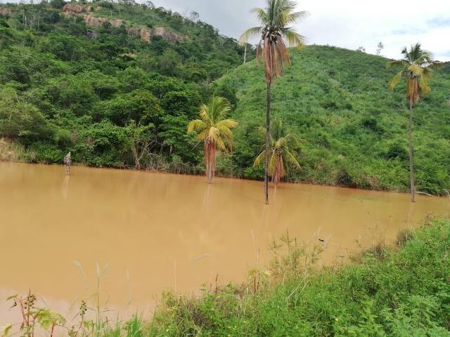 Fazenda com 127 hectares em Baixo Guandu - Foto 3