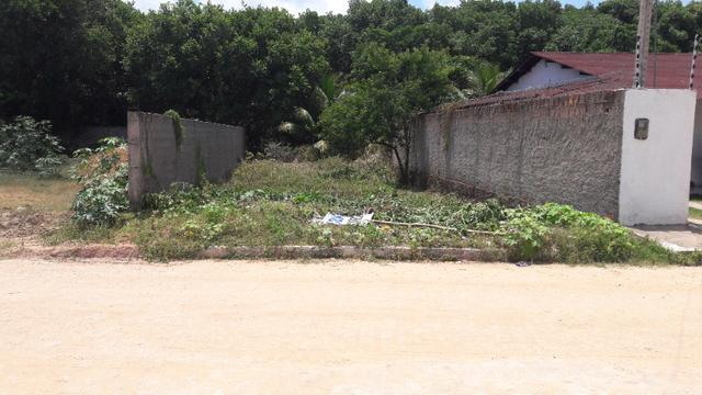 Litoral Norte - Barra de Santo Antônio - Ilha da Croa - Em Rua Pavimentada - Foto 8