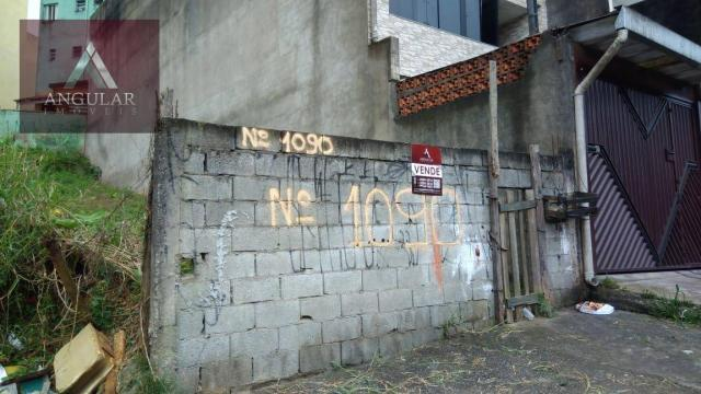 Terreno à venda, 125 m² por r$ 160.000 - jardim irene - santo andré/sp