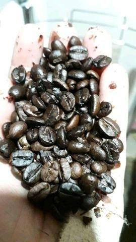 Vende-se Alhos, tempero e pó de café - Foto 5