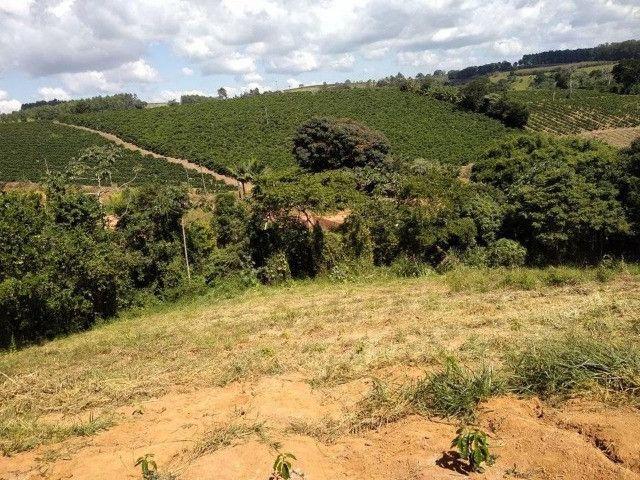 Vende-se chácaras de 1000m² em Muzambinho - Foto 5