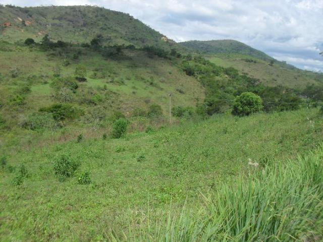 Terreno à venda em São pedro, Areal cod:LIV-7318 - Foto 9
