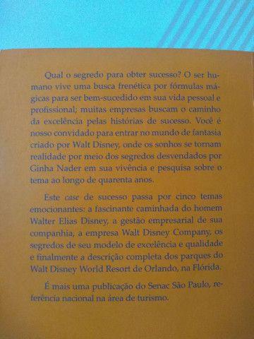 A magia do império Disney - Ginha Nader - Foto 5