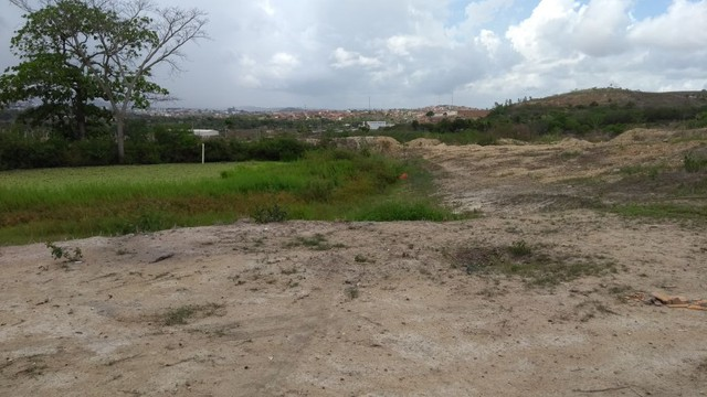 Vendemos 5,5 hectares à 100 metros da BR