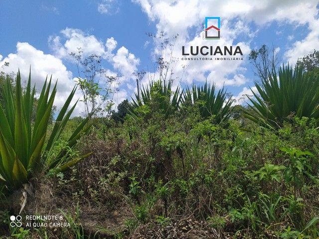 Fazenda/Sítio/Chácara para venda tem 10 metros quadrados em Gravatá Centro - Gravatá - PE - Foto 20
