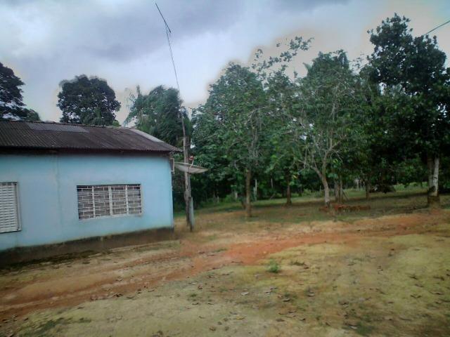 Sitio de 50 hectares