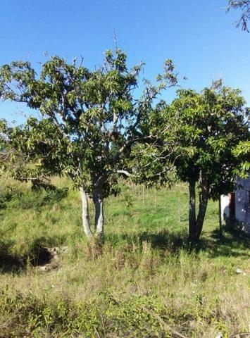 MLCód: 118Terreno no Bairro Monte Alegre em Cabo Frio Rj )(;: - Foto 2