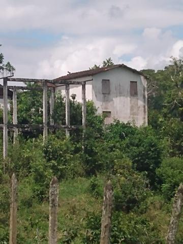 Fazenda Ibicaraí - Foto 18