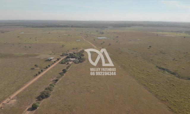 Fazenda à venda, 1134 hectares por R$ 24.000.000,00 - Novo Mundo/MT - Foto 9