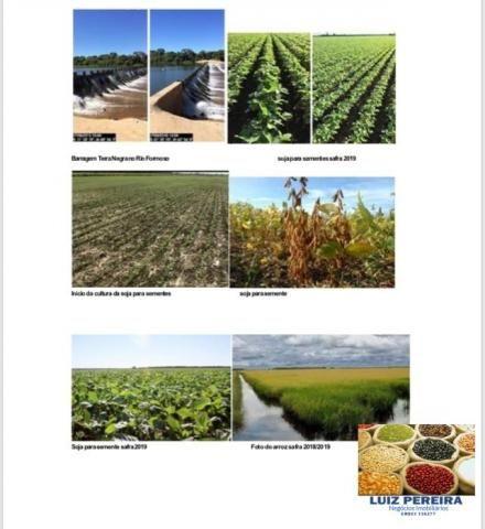 FAZENDA A VENDA P/ AGRICULTURA, PROJETO IRRIGAÇÃO EM LAGOA DA CONFUSÃO -TO