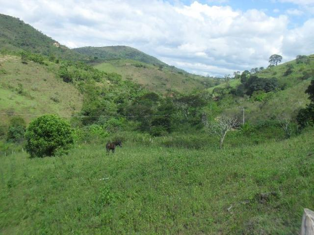 Terreno à venda em São pedro, Areal cod:LIV-7318 - Foto 12