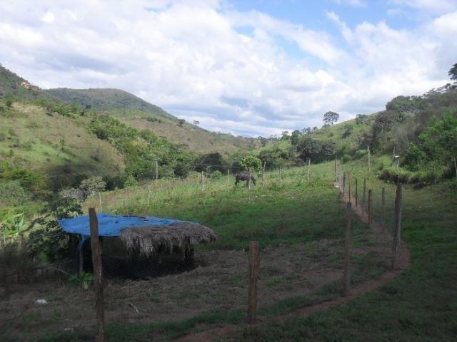 Terreno à venda em São pedro, Areal cod:LIV-7318 - Foto 7
