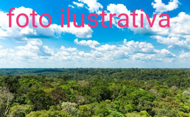 Fazenda de 600 hectares Mucajaí / RR na vila campos novos, ler descrição do anuncio