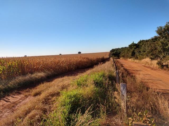 Fazenda Agrícola. 105 Alq. em Montividiu-GO - Foto 2