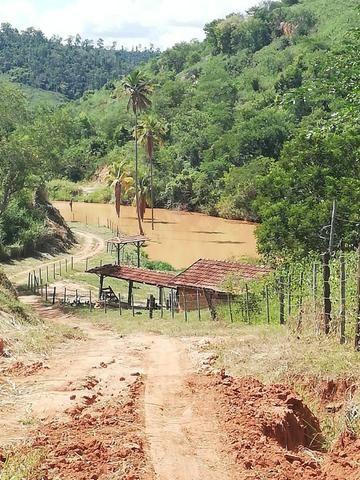 Fazenda com 127 hectares em Baixo Guandu - Foto 7