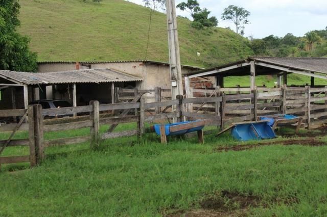 """Fazenda Montada 25 Alqueires Cocalzinho""""Toda Formada,72 km de Anapolis,129 km Goiania - Foto 11"""