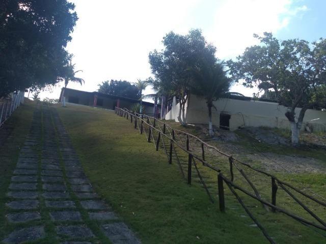 Granja - Foto 10