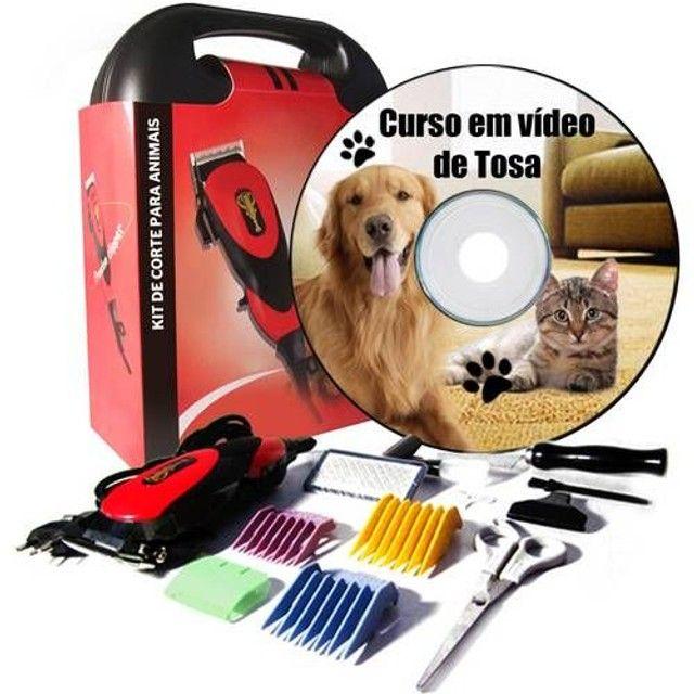 Kit Pet Shop curso e Máquina de tosa kit Profissional