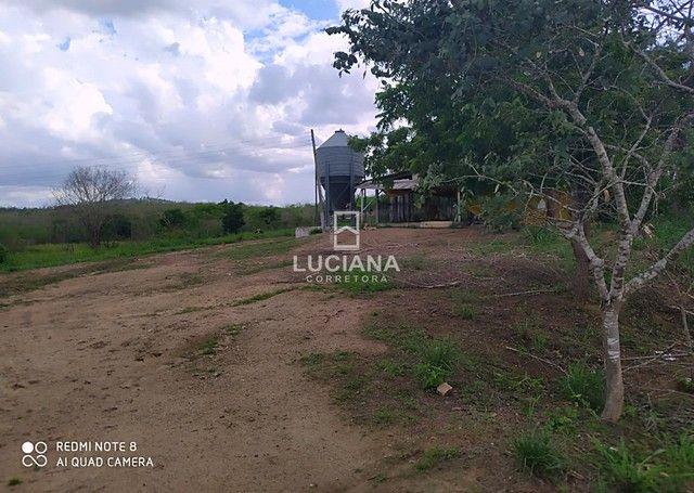Propriedade com 35 hectares em Glória do Goitá - Foto 5