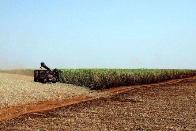 ; Fazendas\Lotes\Terras\Maquinas\Sitios - Foto 2