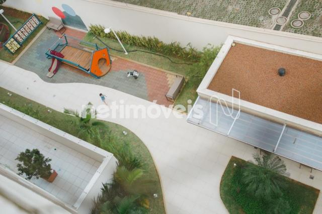 Apartamento à venda com 2 dormitórios em Nova suíssa, Belo horizonte cod:178144 - Foto 10