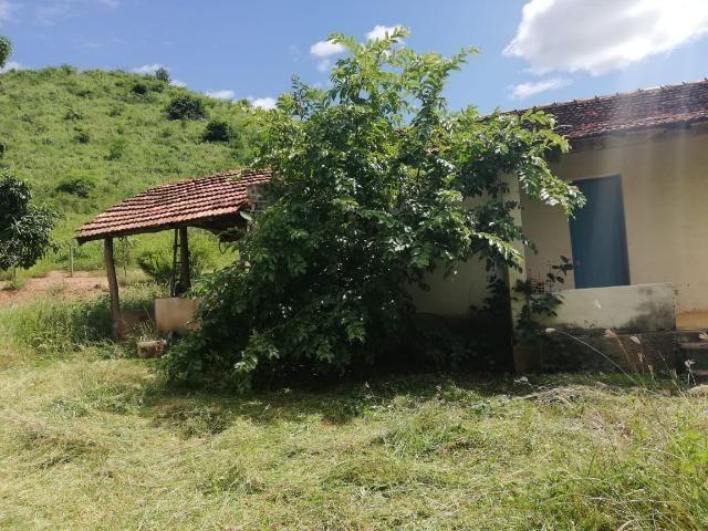 Fazenda com 127 hectares em Baixo Guandu - Foto 4