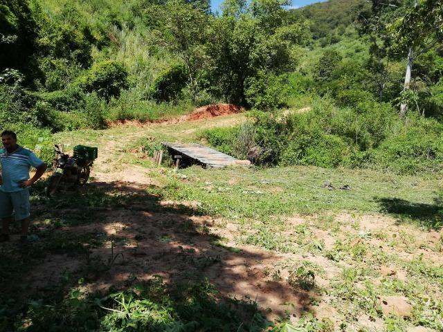 Fazenda com 127 hectares em Baixo Guandu - Foto 9