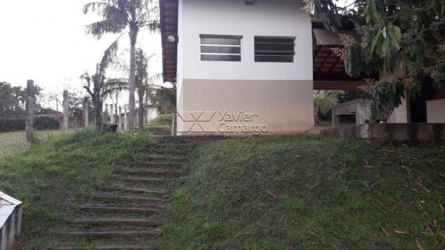 Chácara à venda com 0 dormitórios em Residencial florença, Rio claro cod:7238 - Foto 12