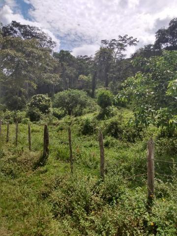 Fazenda Ibicaraí - Foto 6