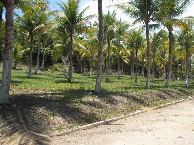 Vendo ou troco terreno em condomínio fechado, na praia de lençóis. - Foto 2