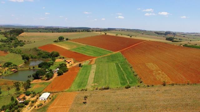 Vendo fazenda em alfenas - Foto 10