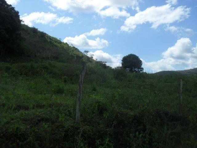 Terreno à venda em São pedro, Areal cod:LIV-7318 - Foto 15