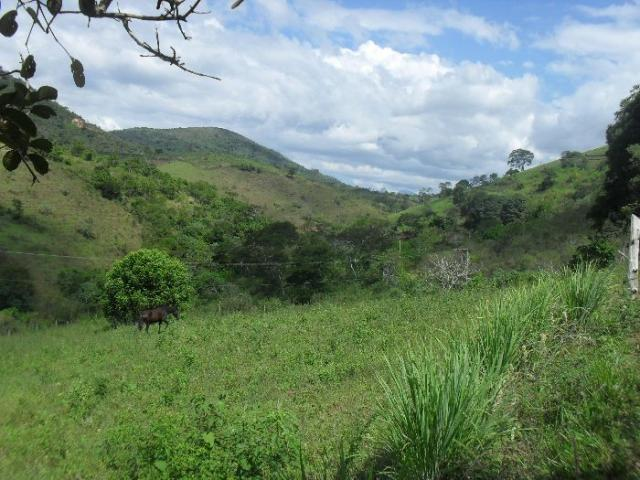 Terreno à venda em São pedro, Areal cod:LIV-7318 - Foto 10