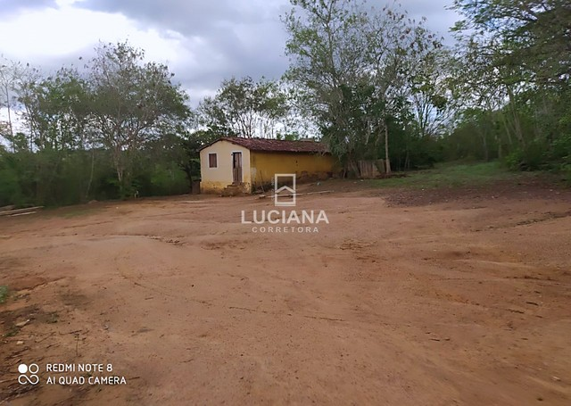 Propriedade com 35 hectares em Glória do Goitá - Foto 9