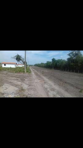 Fazenda em Caxias Maranhão -