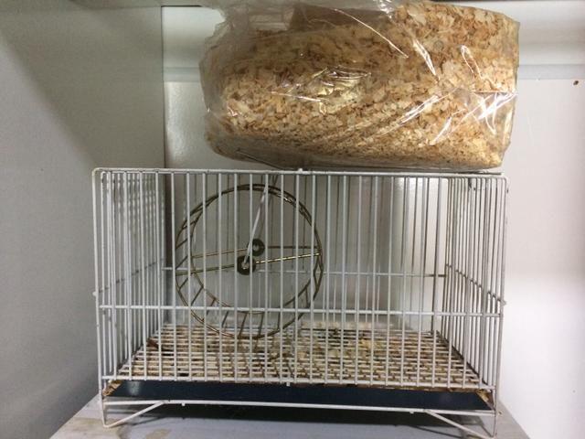 Gaiola pra hamster com serragem