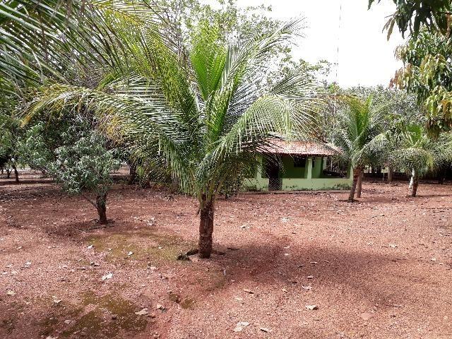 Excelente Fazenda com 93,5 Alqueirão em Novo Acordo Tocantins