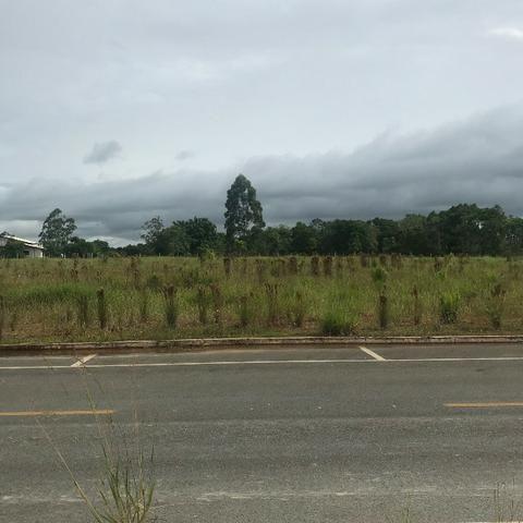 Alugo terreno as margens da BR 101 com pista marginal - Foto 7