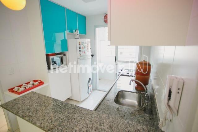 Apartamento à venda com 2 dormitórios em Nova suíssa, Belo horizonte cod:178144 - Foto 4