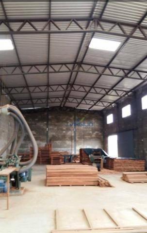 Galpão à venda, 424 m² por R$ 750.000 - Setor dos Bandeirantes - Aparecida de Goiânia/GO - Foto 3